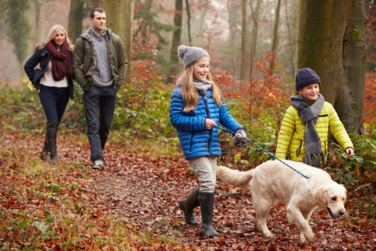 Family gratitude walk